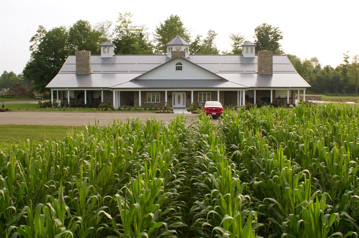 From the fields to the actual house, you will really notice its overwhelming vastness